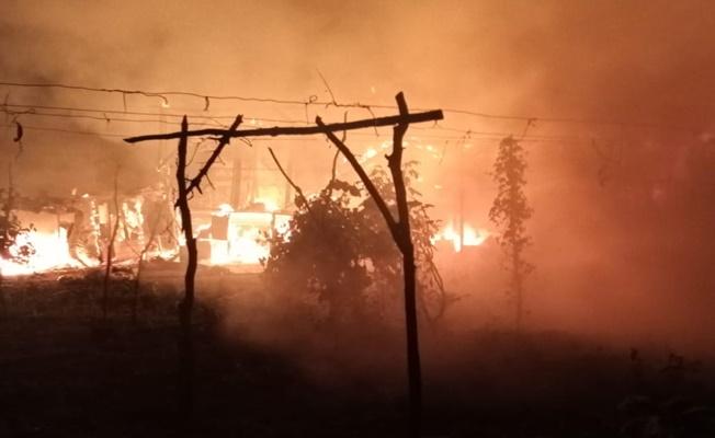 Çiftlikte çıkan yangında çok sayıda hayvan telef oldu!