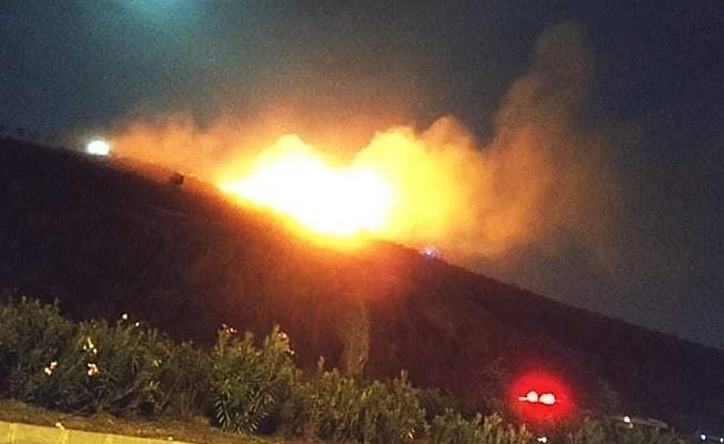 Gebze'de çıkan yangında çok sayıda çam ağacı yandı!