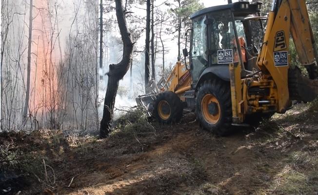 Gebze'de ormanlık alan alev alev yandı!