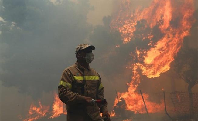 Artvin'de feci yangın;50'ye yakın ev yandı!