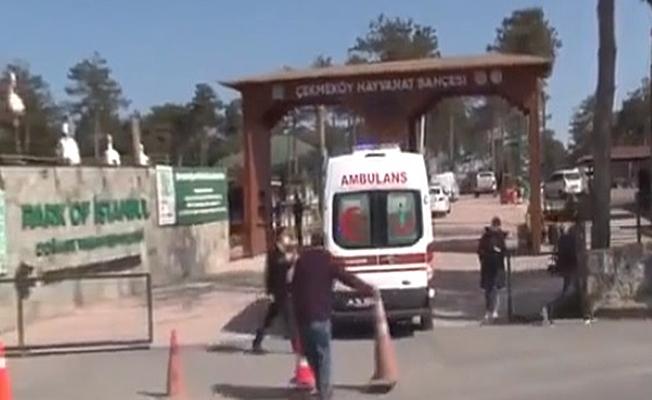 Hayvanat bahçesinde silahlı çatışma: 2 kişi öldü
