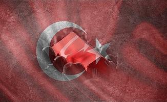 Bitlis'ten acı haber : 2 Şehit
