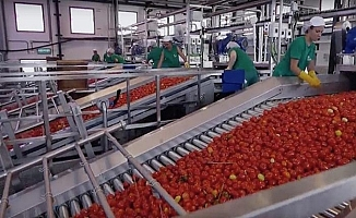 Türkiye'nin en büyük ketçap ve mayonez üreticisi ABD'li firmaya satıldı!