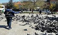 Gebze Polisi Kuşları Doyurdu