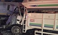 Küçükbaş hayvan yüklü kamyonet, büyükbaş hayvan yüklü TIR'a çarptı