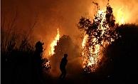 Bulgaristan'daki yangın sınırımıza dayandı!