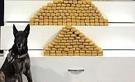 Tem'de durdurulan araçtan 139 kilogram eroin çıktı!